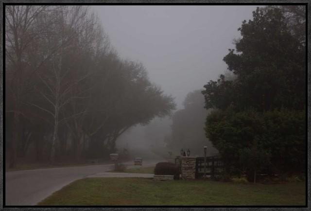"""morning Mist"" Artwork, 22""x14.7""."