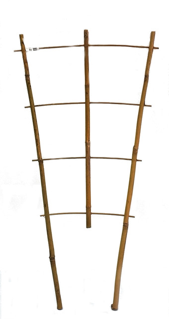 "Set Of 5 Bamboo Ladder Trellis, 24"", 3 Tiers."