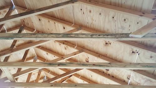 Moldy Trusses Framing Wood