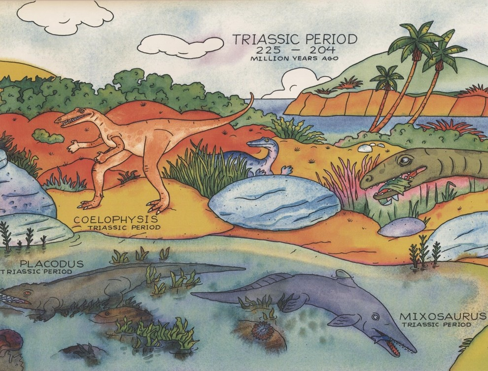 Dinosaurs Species Explained Educational Extra Wide Wallpaper Border Kids Design Tropical Wallpaper By Euro Home Decor