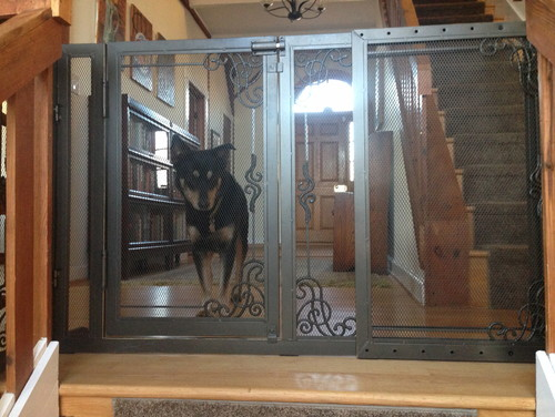 Exceptional I Need An Interior Gate To Separate My Dogs From My Cats.