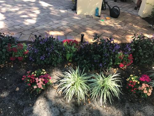 Looking For Help Designing My Garden   Zone 10
