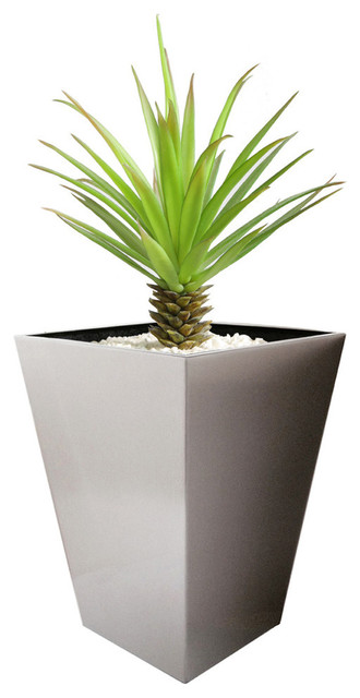 Madeira Conica Tapered Stainless Steel Planter Contemporary