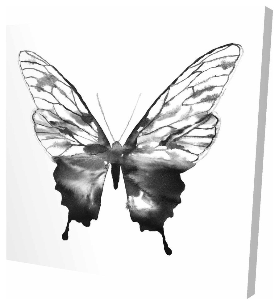 Black Butterfly Sketch Print On Wrapped Canvas Contemporary