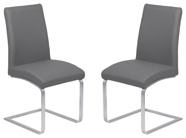 Blanca Brushed Stainless Steel Contemporary Dining Chairs, Set of 2, Gray