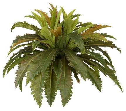 Artificial birds nest fern tropical artificial plants and trees artificial birds nest fern mightylinksfo