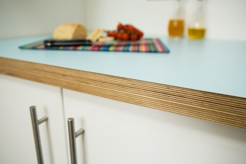 countertop thoughts? laminate on exposed edge plywood?