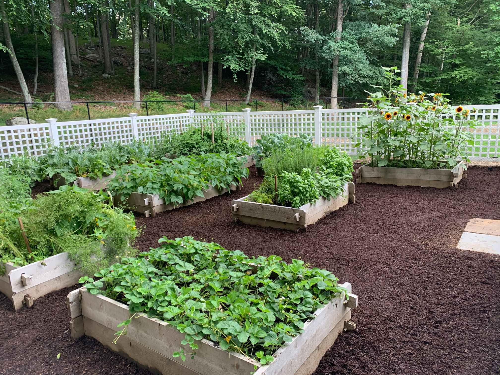 Vegetable Garden Detail