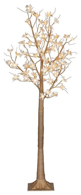 6&x27; Magnolia Tree 72l Ww.