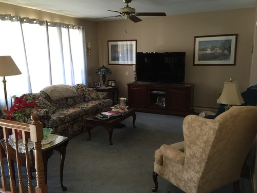 Bi Level Living Room Ideas Palestencom