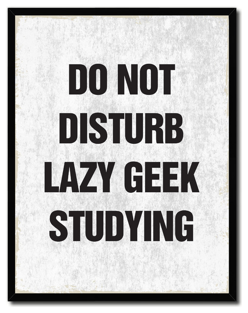 Do Not Disturb Lazy Geek Studying Funny Quote Canvas Picture Frame