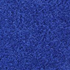 What Colors Go With Royal Blue Carpet Vidalondon