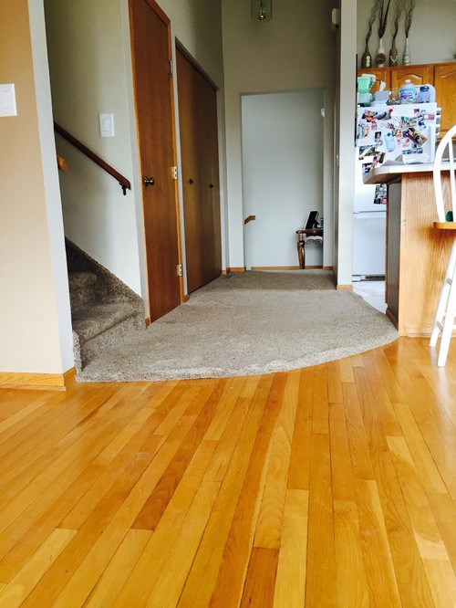 Living room hallway - Carpet or laminate in living room ...