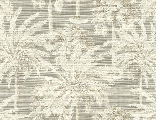 Dream Of Palm Trees Gray Texture Wallpaper Tropical Wallpaper