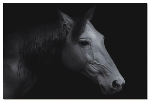 "Acrylic Headshot Portrait Of A Russian Black Horse, 60""x40""."