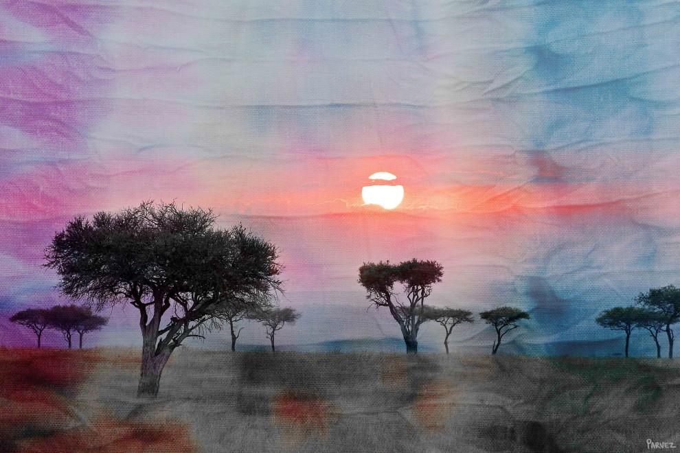 Plains Sunset Print On Canvas Contemporary Prints And Posters By Parvez Taj Houzz