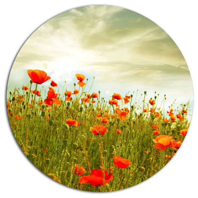 Fantastic Poppy Metal Wall Art Gift - All About Wallart - adelgazare ...