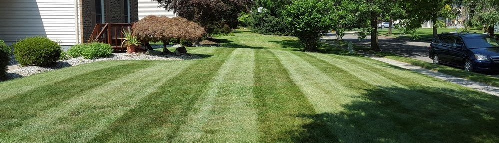 - Windsor Elite Landscaping LLC - East Windsor, NJ, US 08512