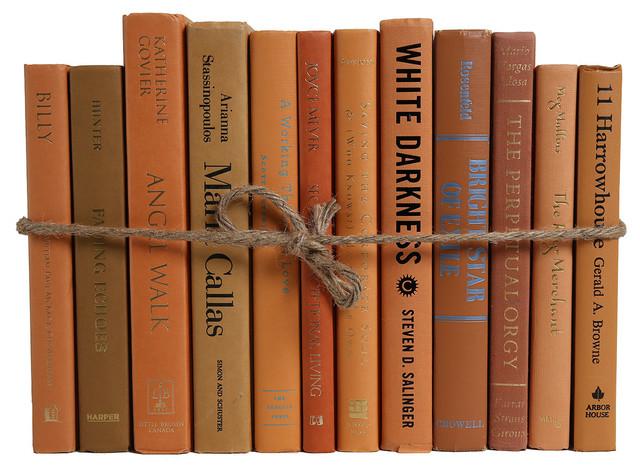 The Modern Caramel ColorPak, Brown Decorative Books