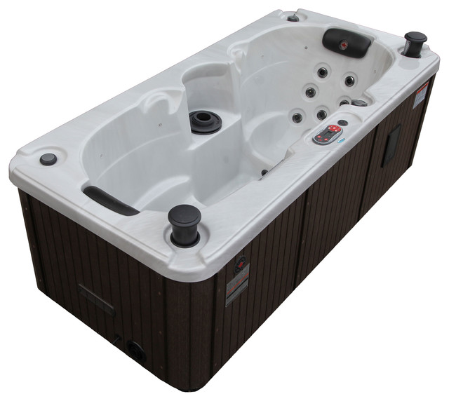 Powell 2 Person Hot Tub Contemporary Hot Tubs By