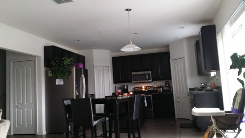 Want To Paint My Kitchen That Is Connected Living RoomI Would