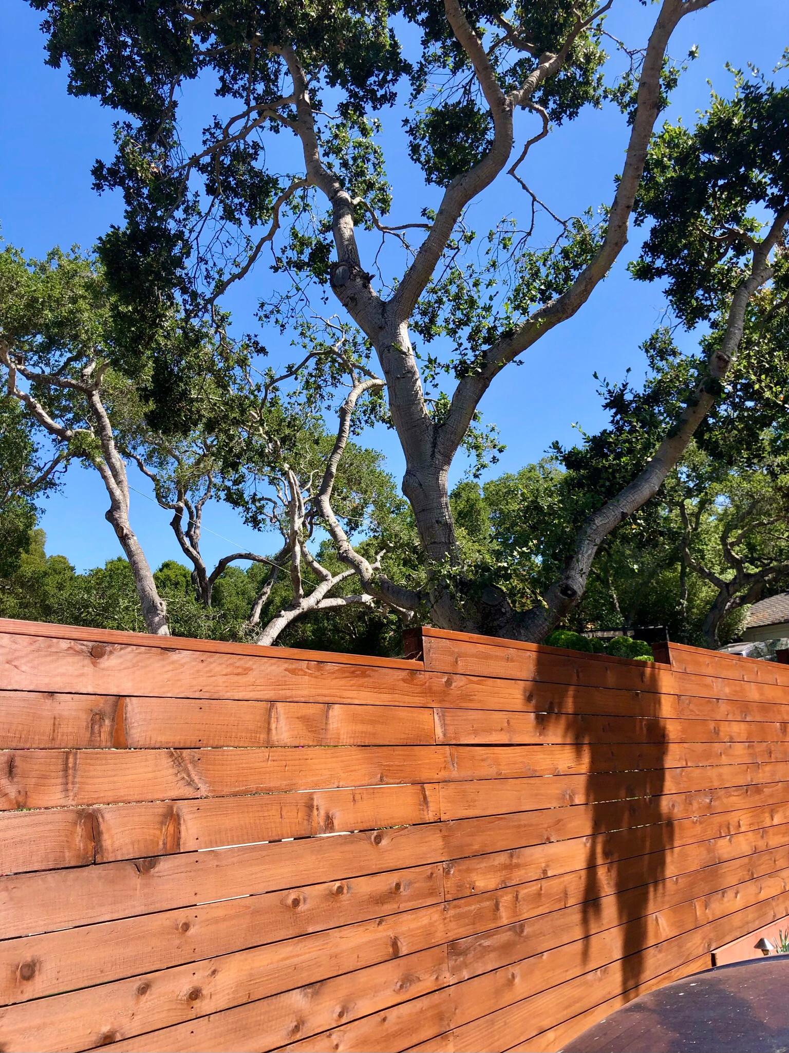 Terraced Hillside Transformation