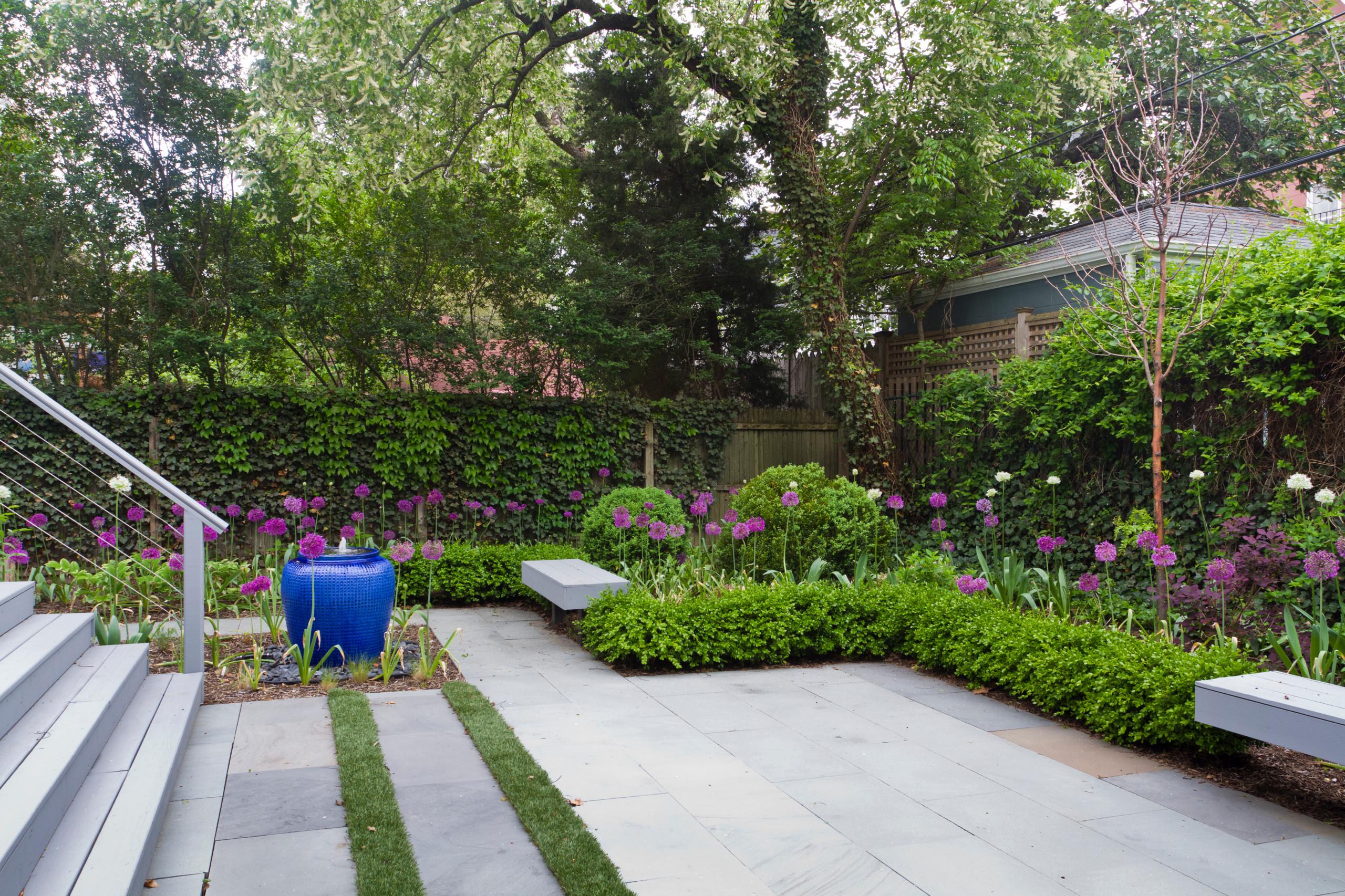 Planting Boxwood Hedge