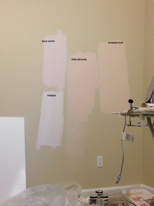 Delightful BABY Girl Nursery PAINT Color
