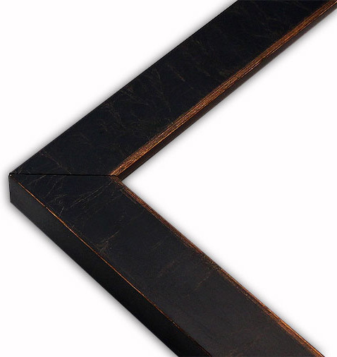 """Modern Black/Gold Picture Frame, Solid Wood, 8""""x10"""" traditional-picture-frames"""