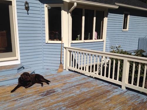 deck paint colorsPaint color for wood deck