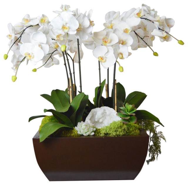 Well-known Orchid and Geode in Large Metal Box - Traditional - Artificial  HL07