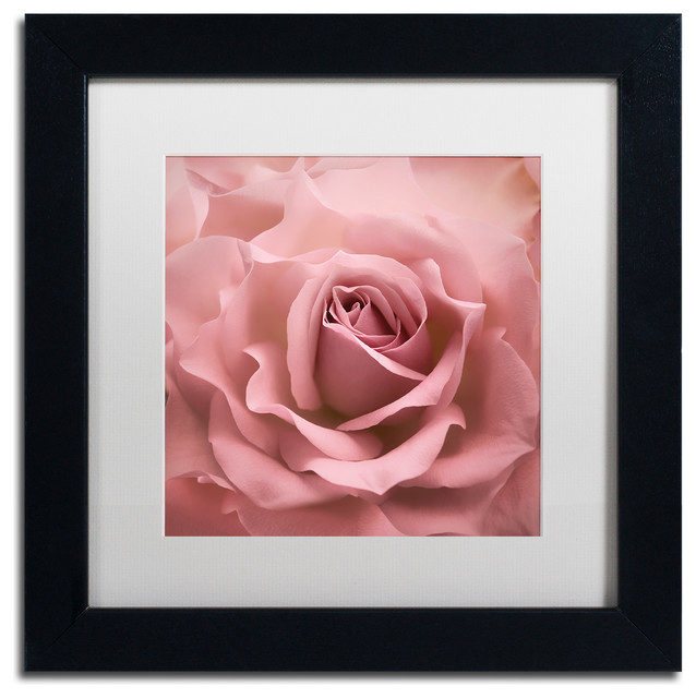 Cora Niele Misty Rose Pink Rose Matted Framed Art  : contemporary prints and posters from www.houzz.com size 638 x 640 jpeg 72kB