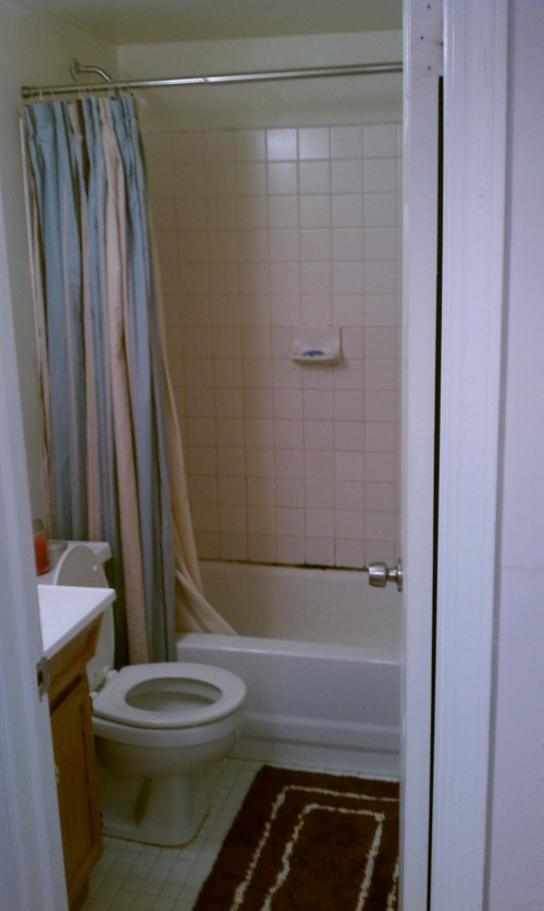 Beautiful Bath Shower Tile Designs Huge Decorative Bathroom Tile Board Clean Good Paint For Bathroom Ceiling Bathtub Ceramic Paint Young Bathrooms Designs Pinterest ColouredCorian Countertops Bathrooms I Recently Purchased My First Home In Philadelphia With 2 Bedrooms ..
