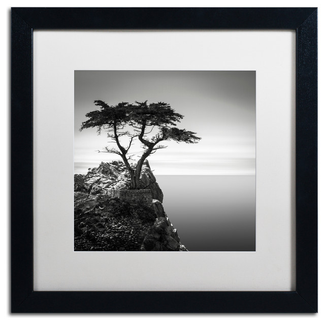 &x27;the Lone Cypress&x27; Matted Framed Canvas Art By Dave Macvicar.