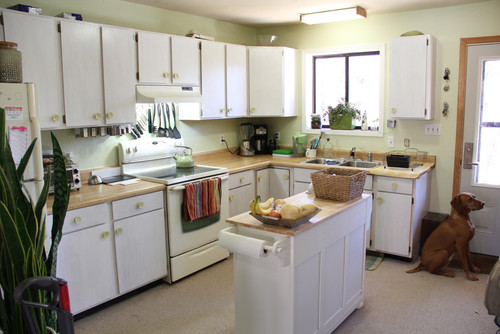 Help me choose kitchen countertops & paint! Zero Maintainence Indestructible Home Designs Html on