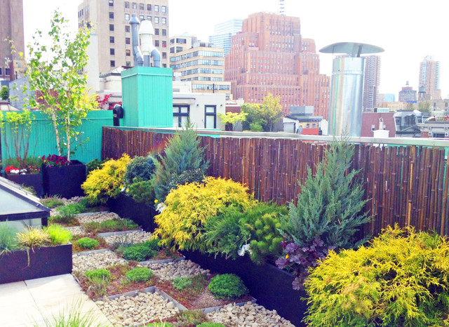 nyc roof garden paver deck terrace sedum trays bamboo fence container