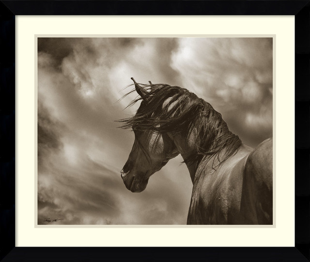 Framed Art Print \'The Renegade Horse\' by Barry Hart: Outer Size 33 ...