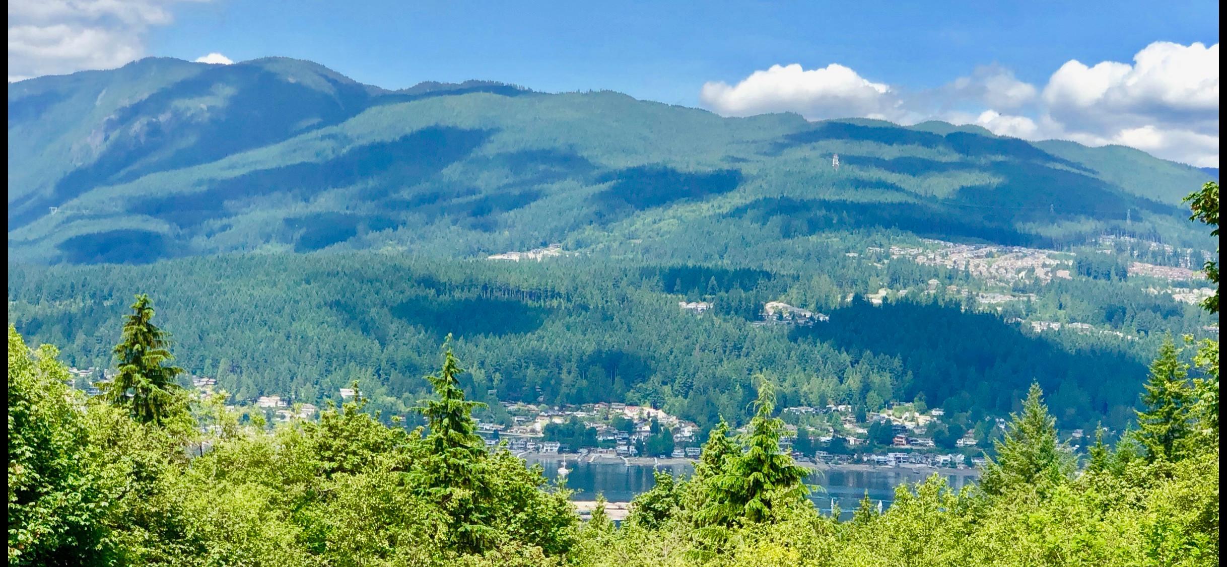 Blue Mountain Residence