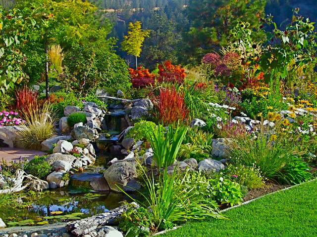 Root Landscaping : Creative roots landscapes