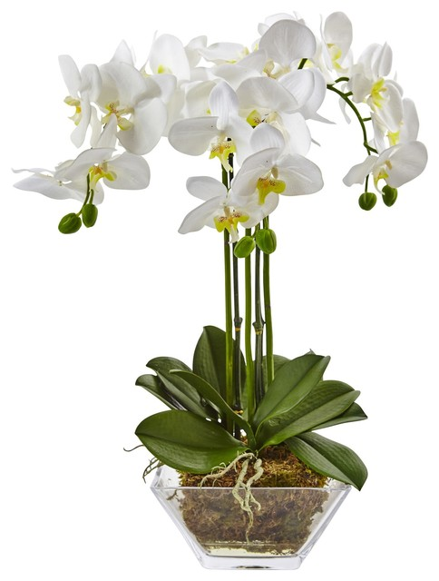 Artificial Flowers Triple Phalaenopsis Orchid In Glass Vase Artificial Plant Contemporary Artificial Flower Arrangements By Wrought Iron Haven