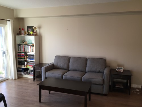 please help me decorate my condo living room - How To Decorate My Living Room