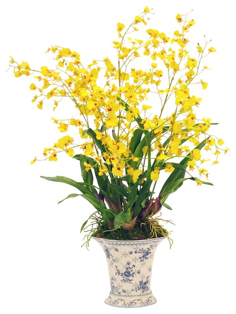 Winward Home Yellow Oncidium Orchid View In Your Room