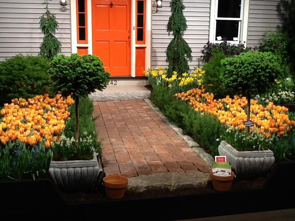 Spring Bulbs (Tulips, Daffodils, Hyaciths, Allium and more)