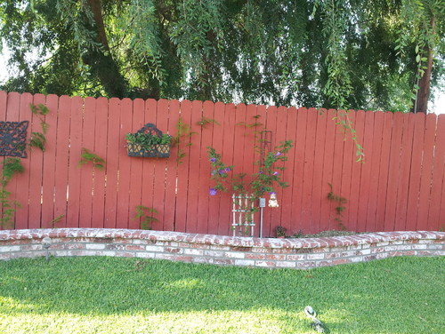 Need Help With Protecting Wood Fence From Dirt And Humidity On Raised  Flower Bed
