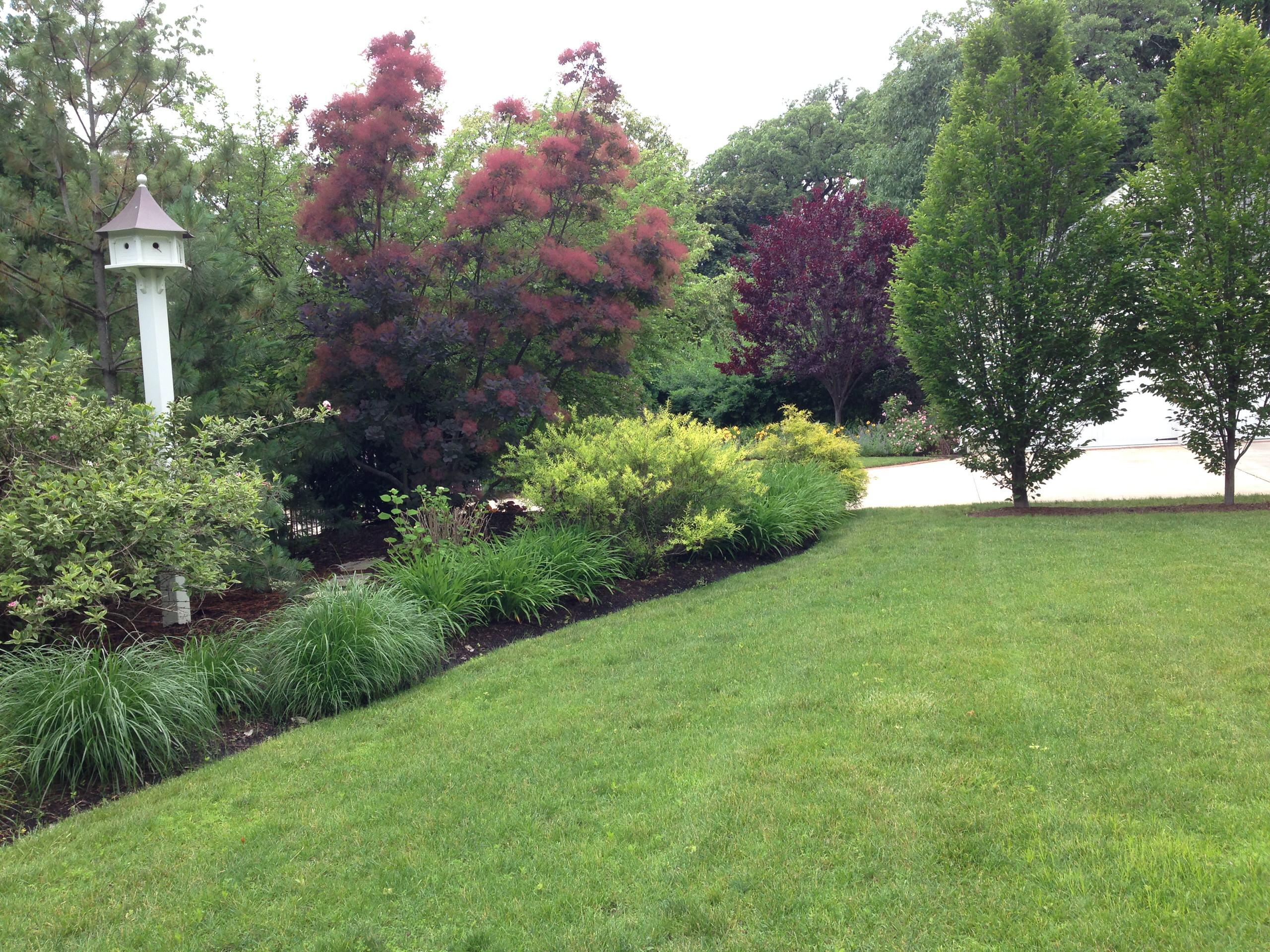Large suburban front yard berm