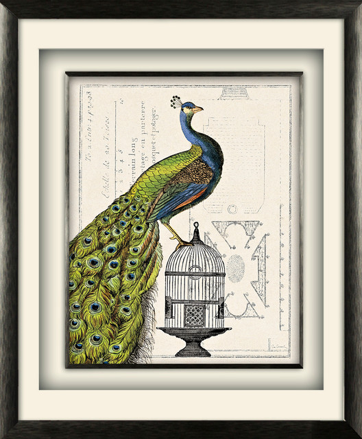"""peacock Birdcage I"" Artwork By Sue Schlabach, Gray Distressed Molding, 17""x21""."