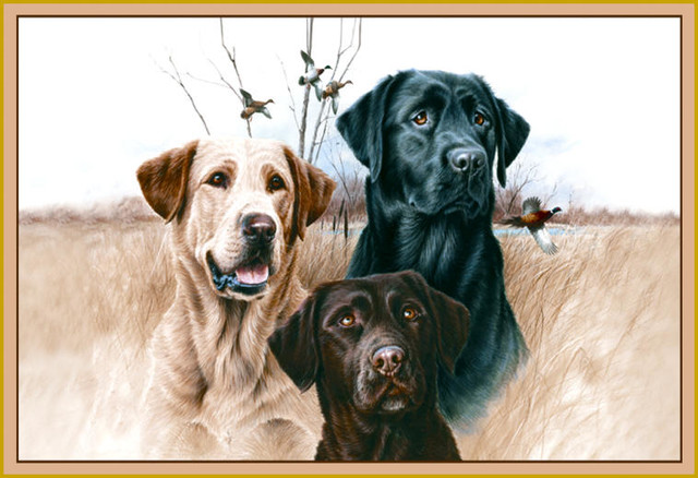 Great Hunting Dogs Rug.