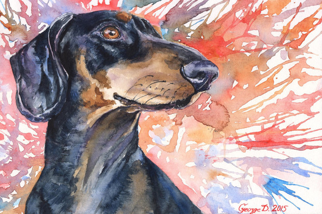 Dachshund Painting Print On Wrapped Canvas.