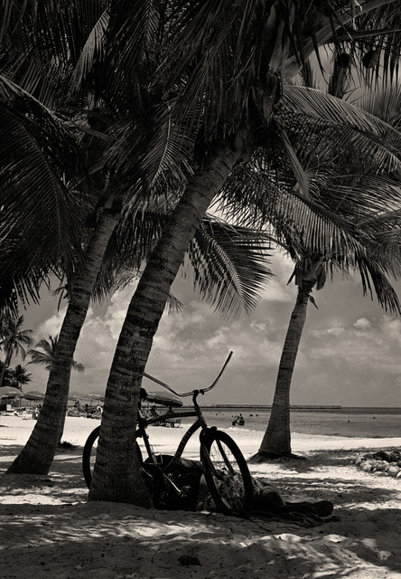 Relaxing at Higgs Beach Florida Keys  Fine Art Black and White Photography, 12x1