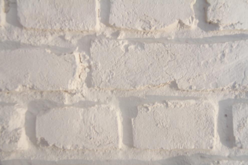 Produkte | Wand | Wandverkleidungen